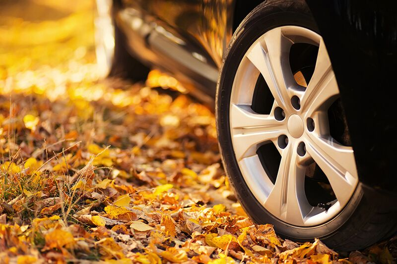 Update Your Auto Insurance for Fall