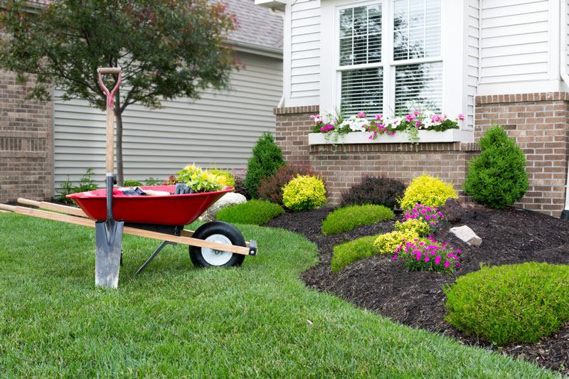 Keep Your Yard Looking Its Best with These Springtime Gardening Tips