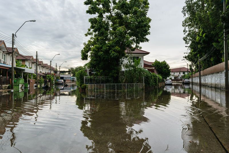 What Should I Do After a Flood Affects My Home?