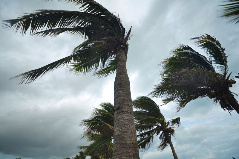 Suggestions to Help You Prepare for Storm Power Outages
